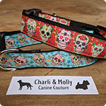 Charli & Molly Canine Couture